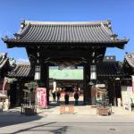 【再婚勝応援ブログvol.541】大阪天満宮「盆梅と盆石展 2018」