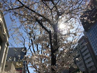 blog20180324-006